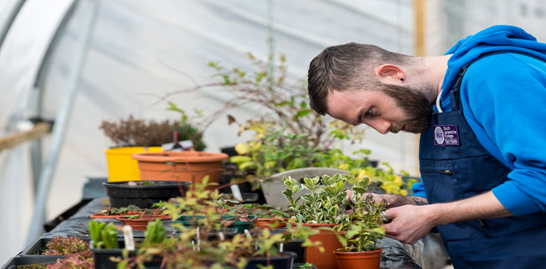 Horticultural Therapy <br>Breaking New Ground in Health &#038; Well-Being
